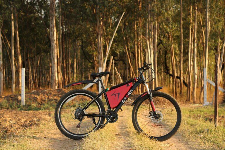 Gebrauchte E-Bikes kaufen – 20 Profitipps für die Suche